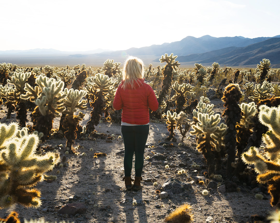 Mountain Girls in Colorado