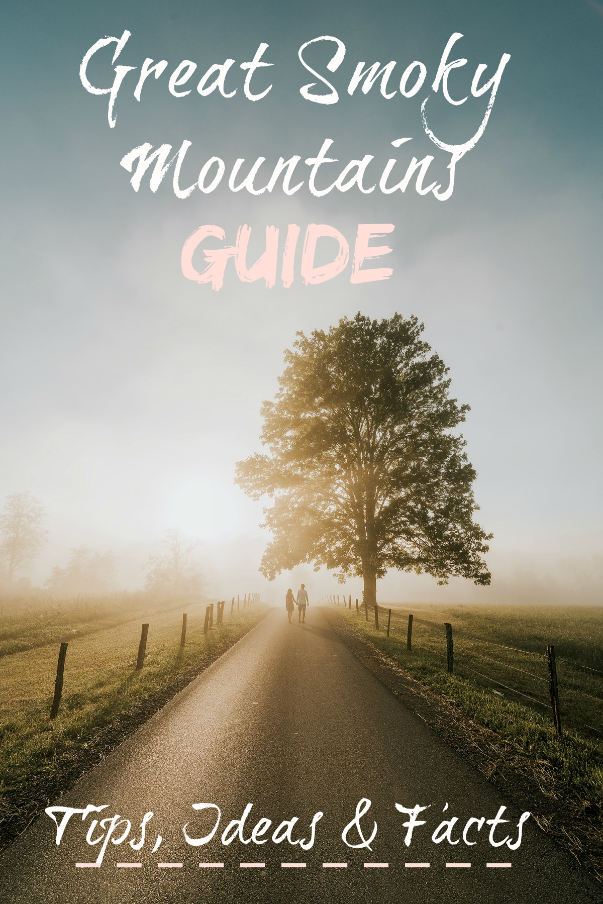 Great Smoky Mountains Guide Renee Roaming