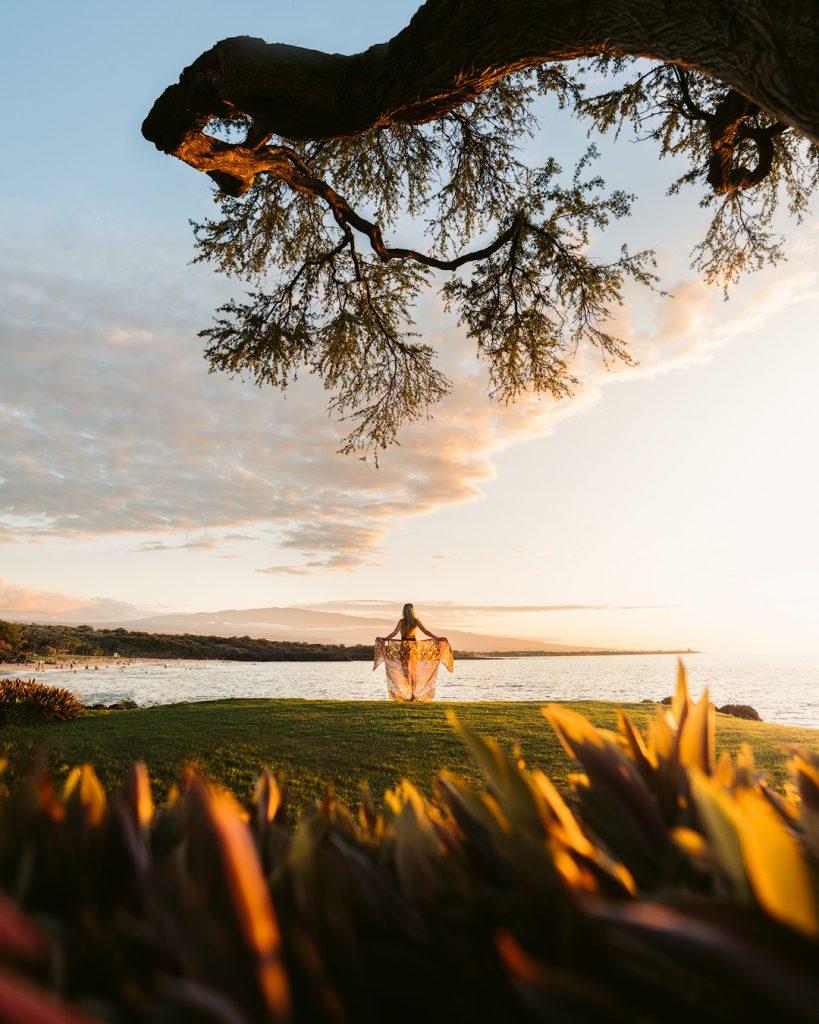 Plan an Incredible Trip to the Big Island of Hawaii - Sunset Tree