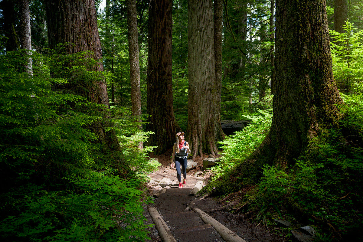 Beginner Friendly Hikes in Washington State - Lake 22 Trail