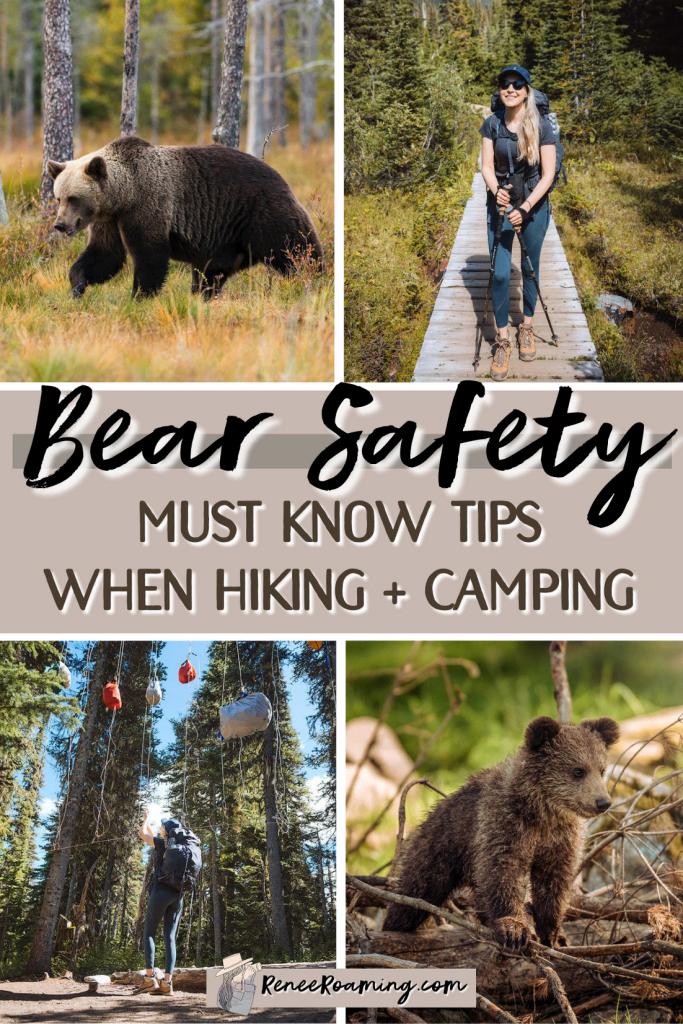 Bear Safety Must Know Tips When Hiking and Camping - Renee Roaming