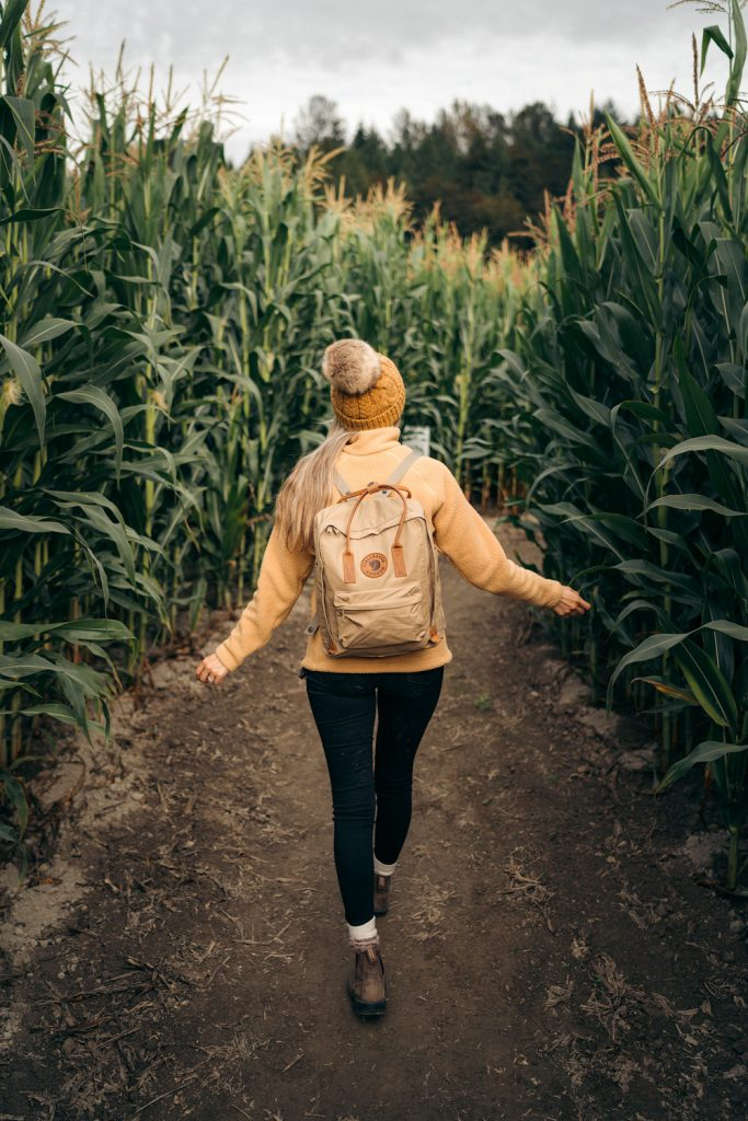 Best outdoor things to do during fall in Washington State - Craven Farms corn maze adventure