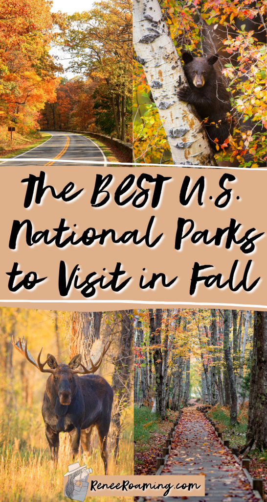 Fall is one of the best times of the year to take a national park adventure! Not only are crowds generally quieter and accommodation is cheaper, but you also get to see the beautiful fall foliage and changing colors! In this blog post I am sharing the 12 best national parks to visit in the fall. These recommendations also come from firsthand experience of someone who has traveled to every US national park!   national parks fall color   national parks fall foliage  