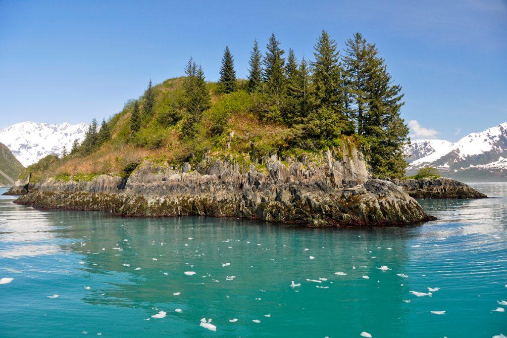 Boat Tour Views