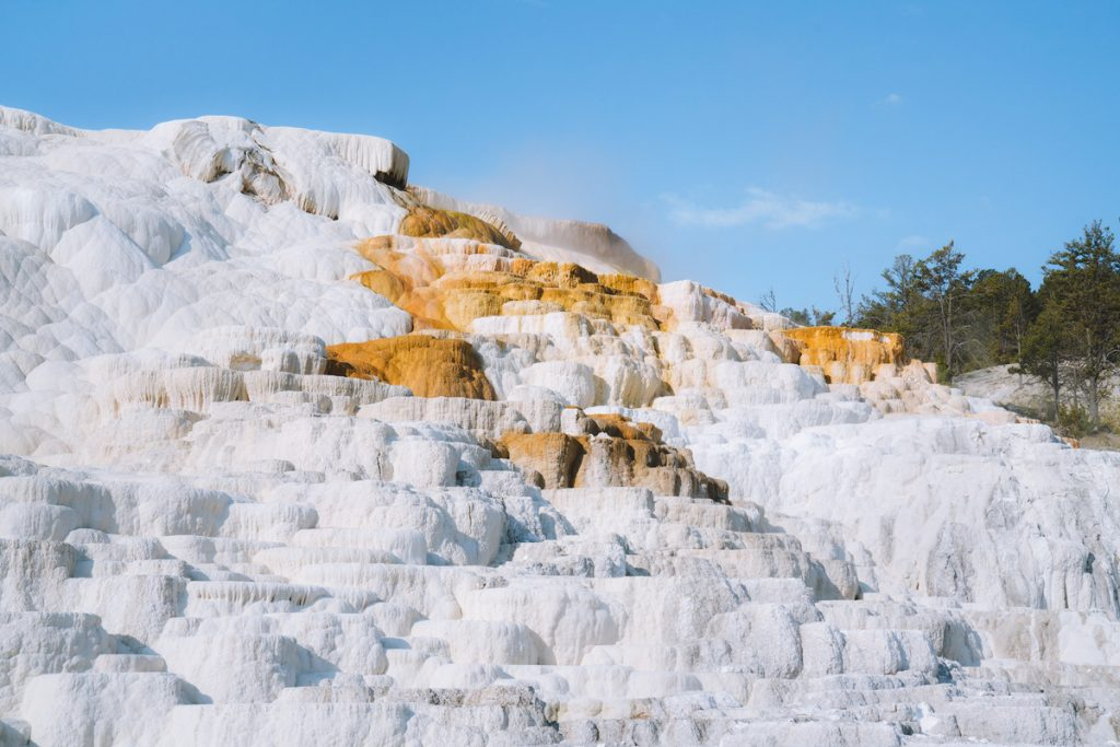Ultimate Yellowstone National Park Guide and Itinerary- Mammoth Hot Springs Terraces