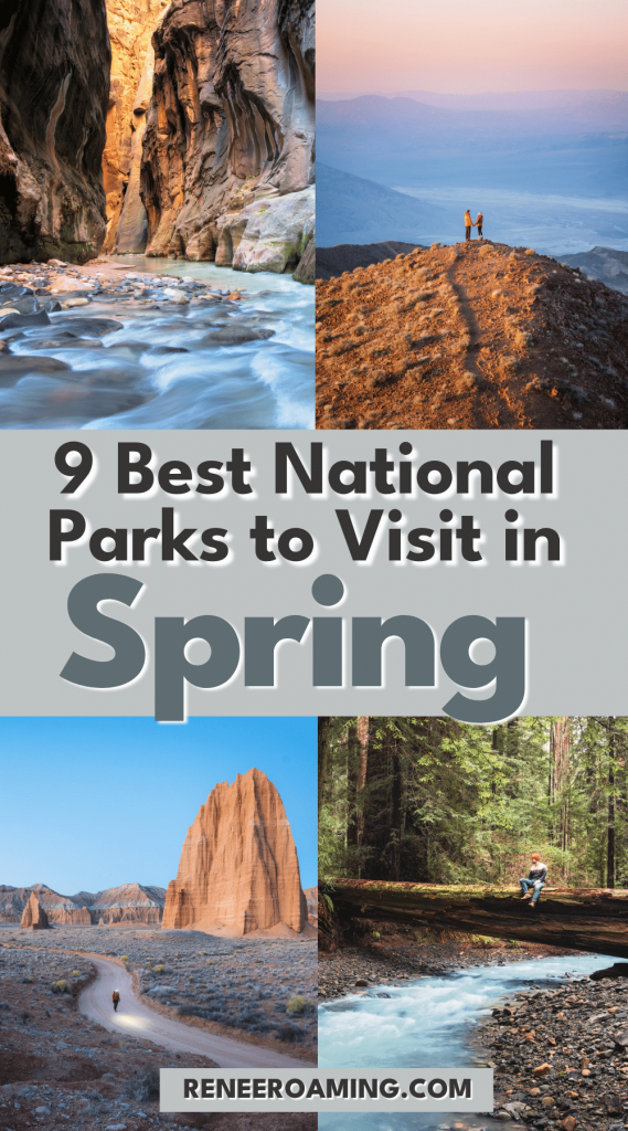 Spring is a beautiful time all around the US, but is it a good time to visit our national parks? Yes! For many national parks, spring provides perfect conditions for travelers stoked to get out after a long winter indoors. Manageable crowds, blooming wildflowers, and moderate temperatures are just a few of the reasons for this. To inspire your adventures, I am sharing the 9 best national parks to visit in spring! #nationalparks #usatravel #springtravel