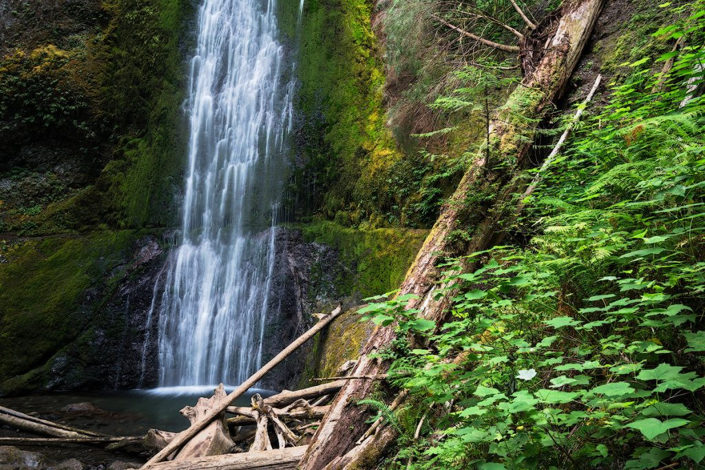 Best National Parks to Visit in Spring - Olympic National Park - Marymere Falls
