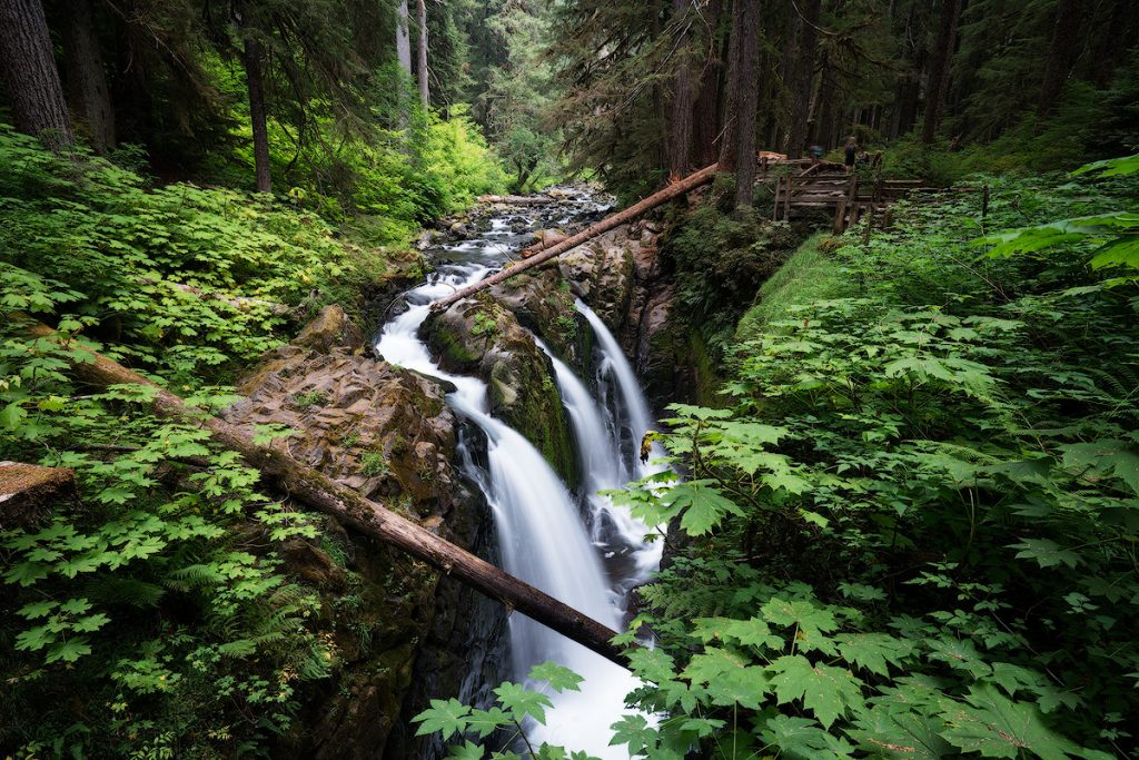 Best National Parks to Visit in Spring - Olympic National Park - Sul Duc Falls