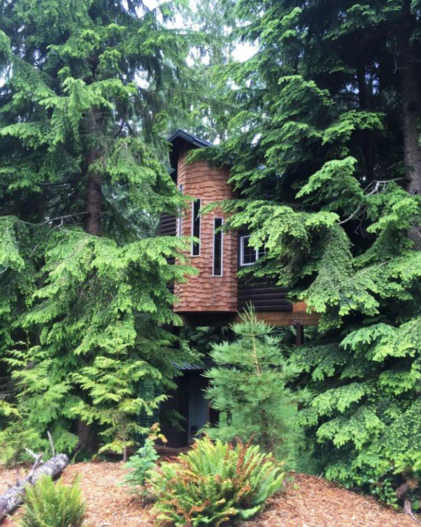 Best Pacific Northwest Treehouse Rentals - Treehouse Suite Washington
