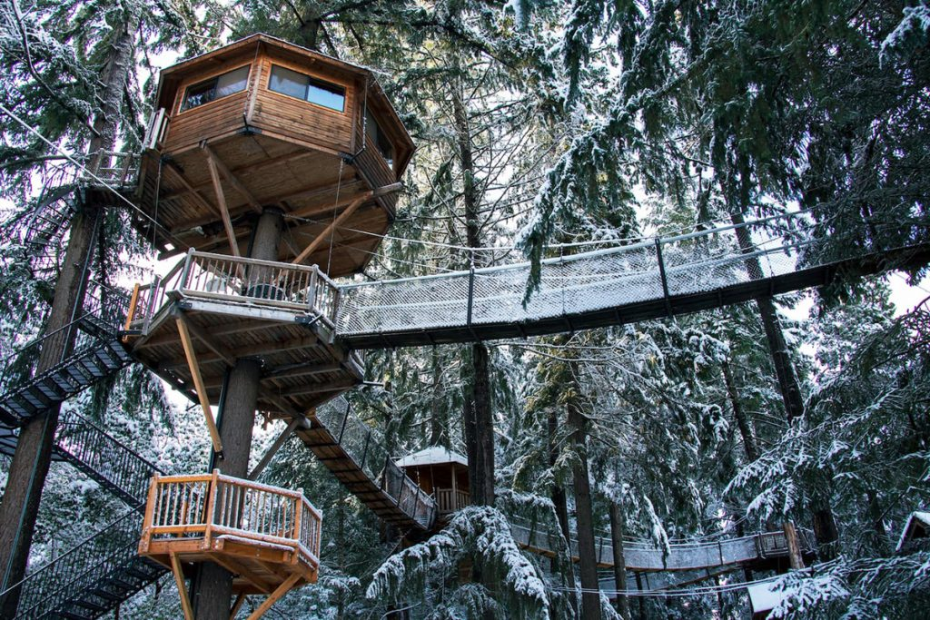 Best Pacific Northwest Treehouses To Rent - Majestree Oregon Treehouse