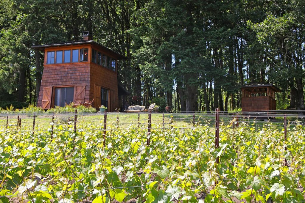 Oregon Cabin in Wine Country