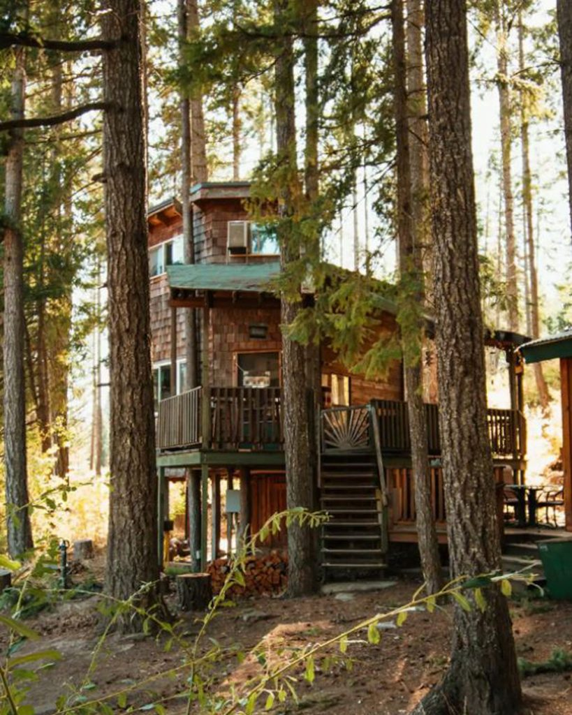 Pacific Northwest Treehouses - Lothlorien Woods Treehouse