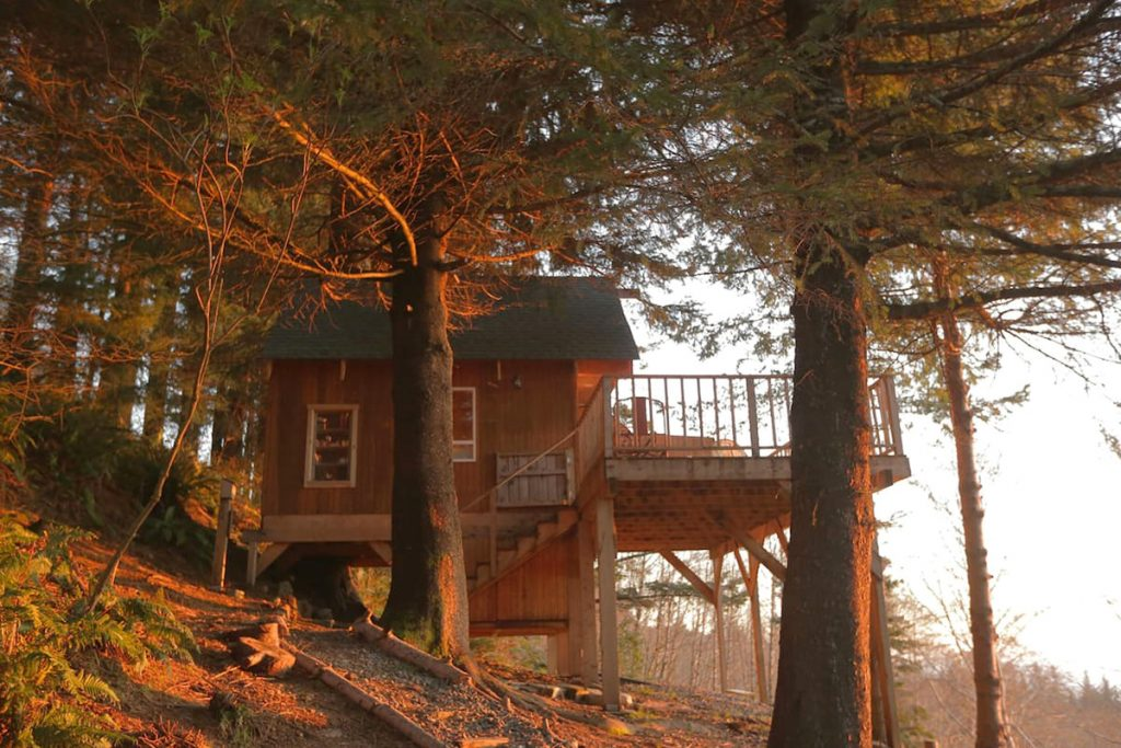 Treehouse You Can Rent In Oregon - The Bluebird Oregon Treehouse