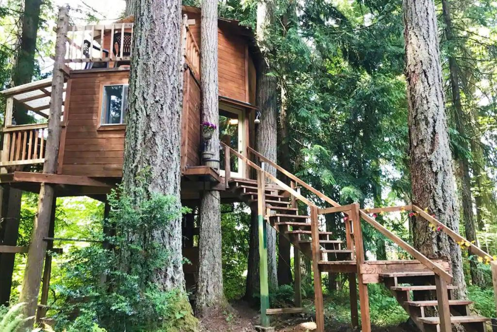 Treehouse to rent in the Pacific Northwest -AirbnbTree Washington Treehouse