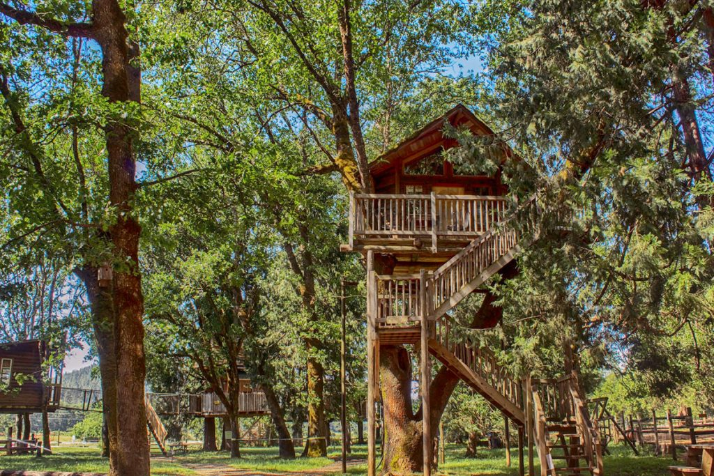 Treehouses You Can Rent In Oregon - Peacock Perch Treehouse
