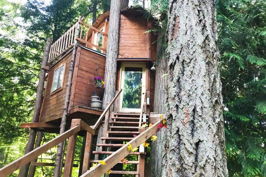 Treehouses to rent in the Pacific Northwest -AirbnbTree Washington Treehouse