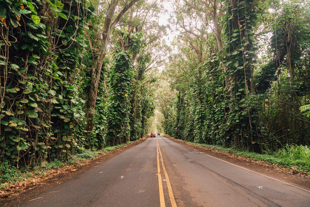 Kauai Hawaii Travel Guide - Best Kauai Beaches - South Shore