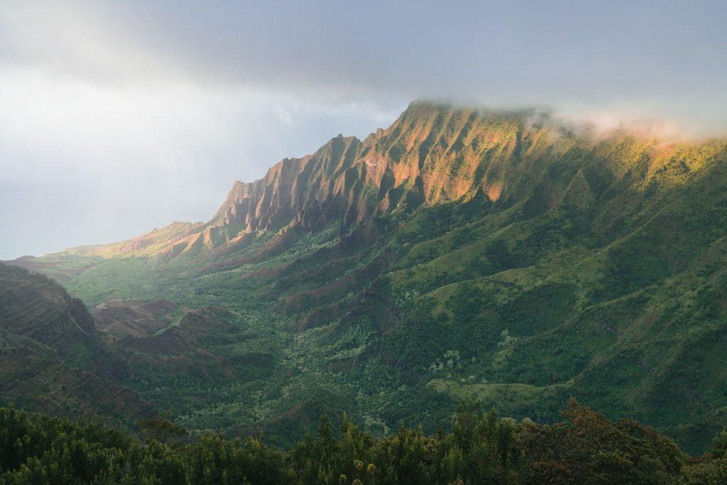 Kauai Hawaii Travel Guide - Where To Go in Kauai - Kōkeʻe State Park