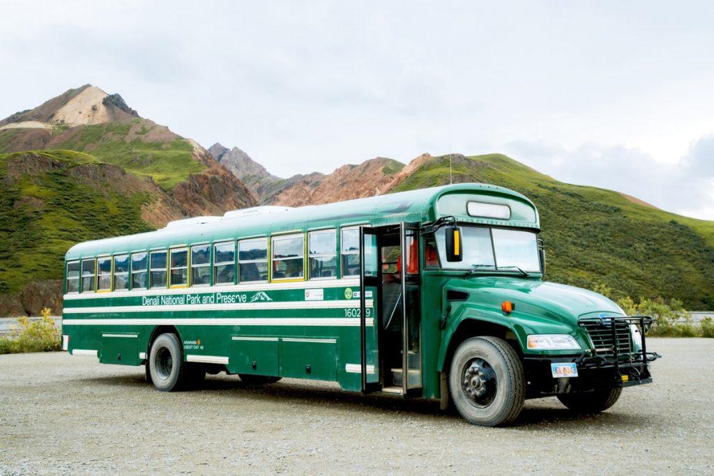Denali School Bus Tour