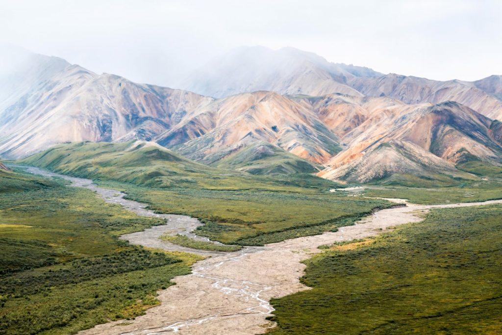 Best National Parks to Visit in Summer - Denali National Park Tour