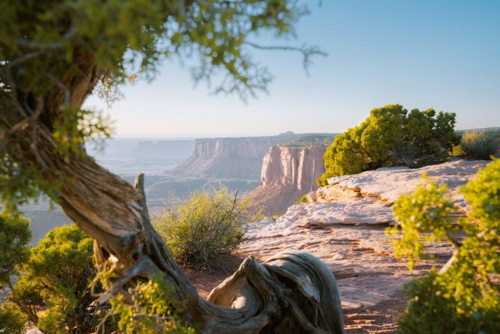 Ultimate Utah National Parks Road Trip - Canyonlands National Park