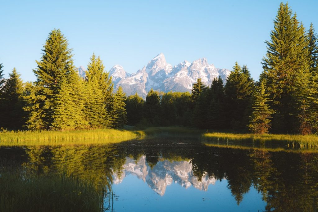 Ultimate Yellowstone National Park Guide and Itinerary - Schwabacher Landing